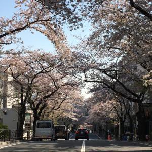 https://ameblo.jp/nagap39/entry-12587897792.html
