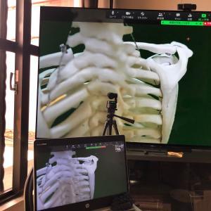 「動画で学ぶ解剖学セミナー」イントロダクション