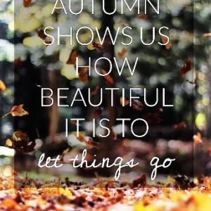 秋が教えてくれること