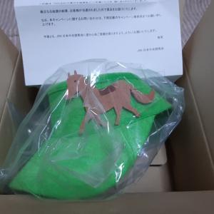 当選報告:JRAからかわいいサンバイザー到着!!