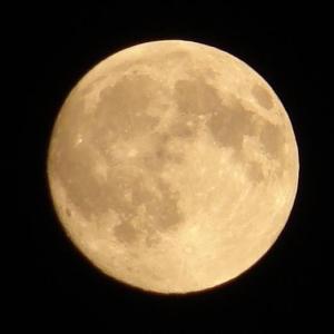 月のリズムを味方につけて