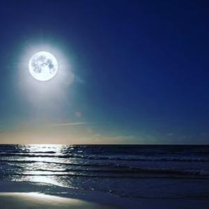 【早割特典】月のリズムと自然療法講座 2DAY'S