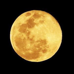 自然治癒力高める「月」の秘密