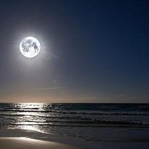 【自然療法フェスティバル2021】月のリズムと自然療法講座~オンライン(zoom)