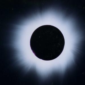 【新月に月の力をかりて】内から整えるハーブ&アロマ