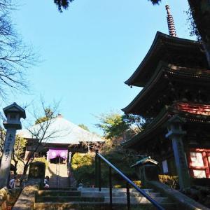 油山寺(袋井市) その③ 三重塔、薬師本堂、るりの滝