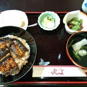 たまには浜松以外で鰻をと、豊橋で一番の老舗鰻料理専門店『丸よ』さんへ