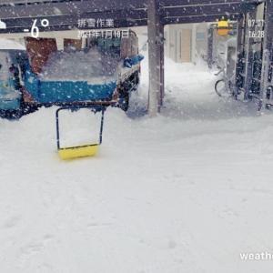 2021/1/14  排雪作業