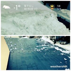 2021/1/16 またまた雪下ろし
