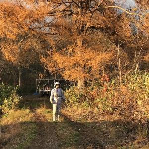 秋に遊び歩く農家は、潰れる。 <来年の笑顔は今年の仕込み次第>