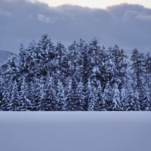 福山とMISIAに泣かされた紅白、そして'21幕開け <新年のご挨拶>