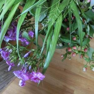 庭の花で墓参り