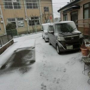 吹雪いてます