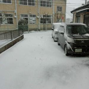 まだ吹雪いてます