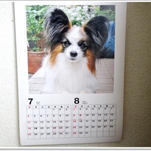 7月に入って・・・カレンダーチェックしたよ