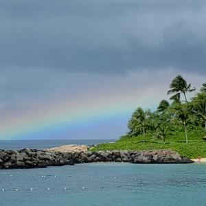 虹、虹、虹!!