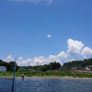 8,1桂川で鮎釣り