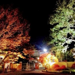 夜散歩@神楽坂店