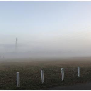 幻想的なフィールドで早朝レッスン