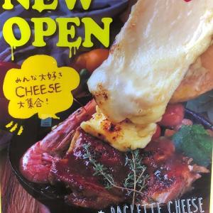 大阪のNU茶屋町9Fにある、チーズ専門店『Cheese&Grill BeNe』さんでのディナー♪