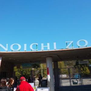 のいち動物公園❗️