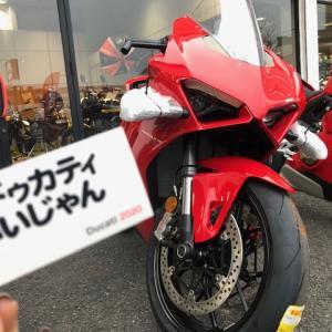 【速報】最新モデルV4入荷!