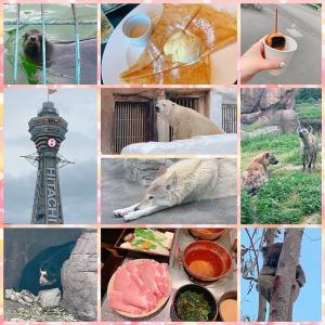 大阪観光☆おおきに~(笑)