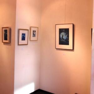 躍動感あふれる海の生物たちの銅版画作品展…坪井富佐乃銅版画展・生命の躍動