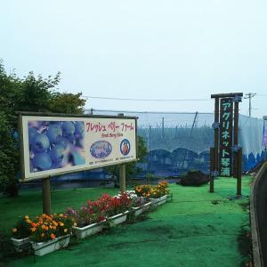 観光農園は県内の皆様が多いです