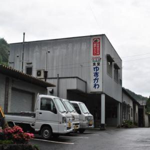 遊子川の花菖蒲園