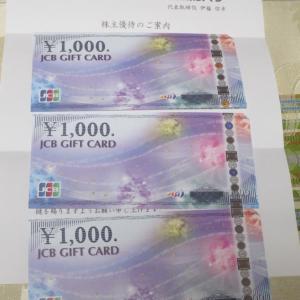 【株主優待】『ホットマン』 100株 x3