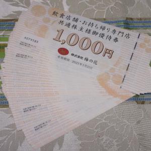 【株主優待】『梅の花』 800株