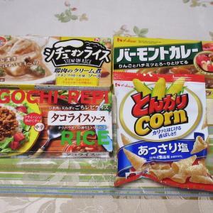【株主優待】『ハウス食品グループ本社』 200株 x2