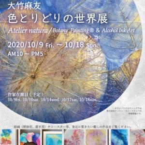 【10/9〜10/18】個展⭐︎開催と新しき道