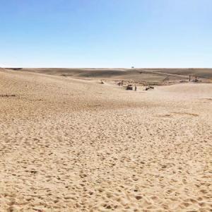 日本三大砂丘のひとつ!