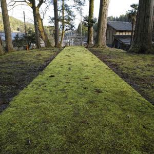 200324宮島神社
