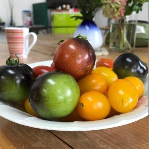 大量のミニトマトをもらった日