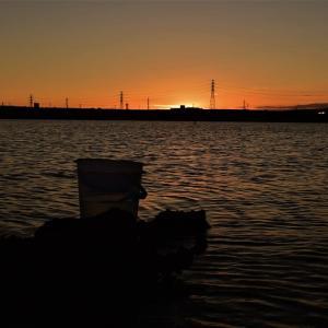 夜明け前からハゼ釣りしました