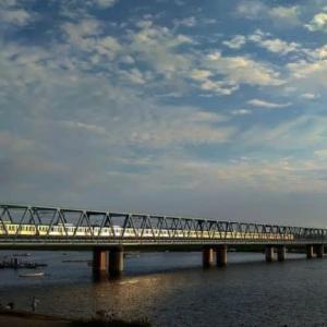 江戸川のハゼの成長