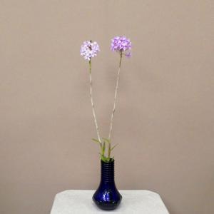 岩田ガラス ブルーの器とエピデンドラム