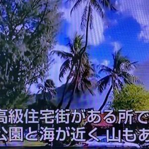 テレビ朝日 サンデーステーションでハワイのエリアについてコメントしました