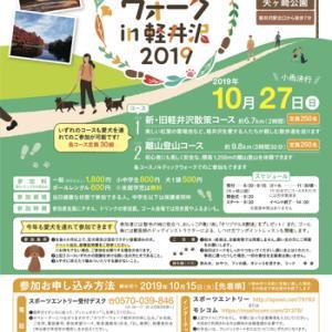 軽井沢イベント情報!!~秋の軽井沢で愛犬と散歩~