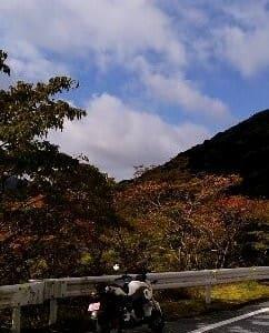 国道306号線は秋色に染まりつつ