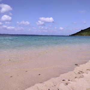 宮古島 新城海岸で一日中泳ぐ幸せな一日