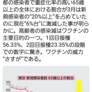 昨日は大分県大会から戻り、高知県本部の昇級審査会。
