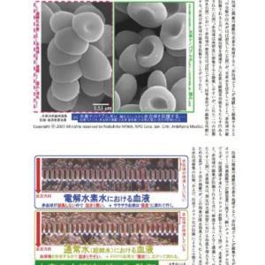 水素フォーラム 3 日本をいい国にしたいです。
