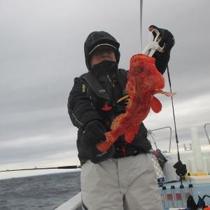 29日土曜オニカサゴ出船しました。