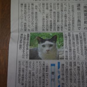地域猫セミナーではじめの一歩(長野県飯田市)