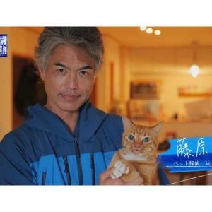 「情熱大陸」ペット探偵・藤原博史さん