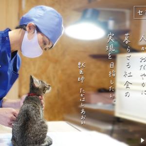 行政獣医師からTNR専門病院へ・髙橋 葵先生
